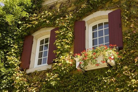 flower-facade-building-tiamgostar.com-1
